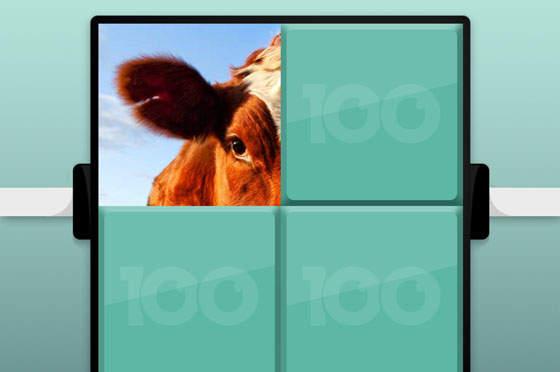 100 Pics Quiz Tiere Lösung