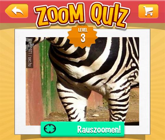 Zoom Quiz Lösung